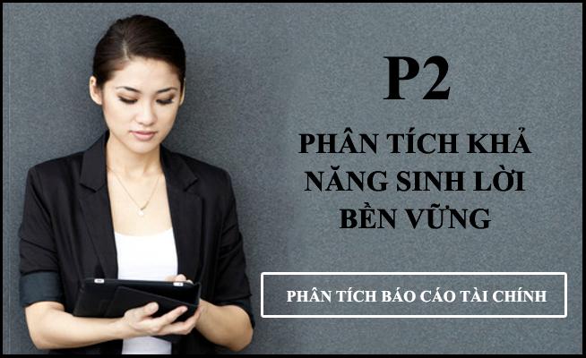 pt-BAO-CAO-TAI-CHINH-P3.jpg